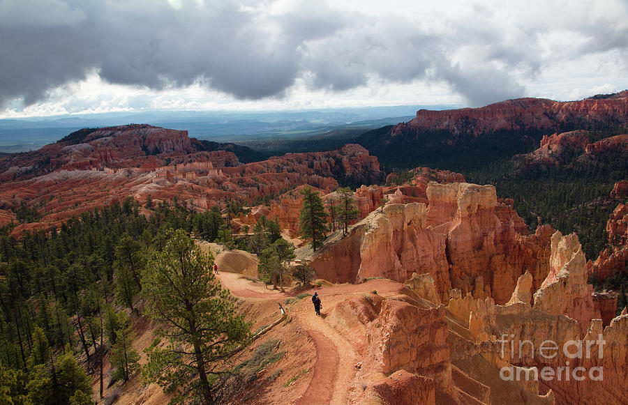 Morning stroll in Bryce Canyon by Agnes Caruso