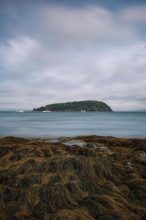 Morning View by Robert Fawcett