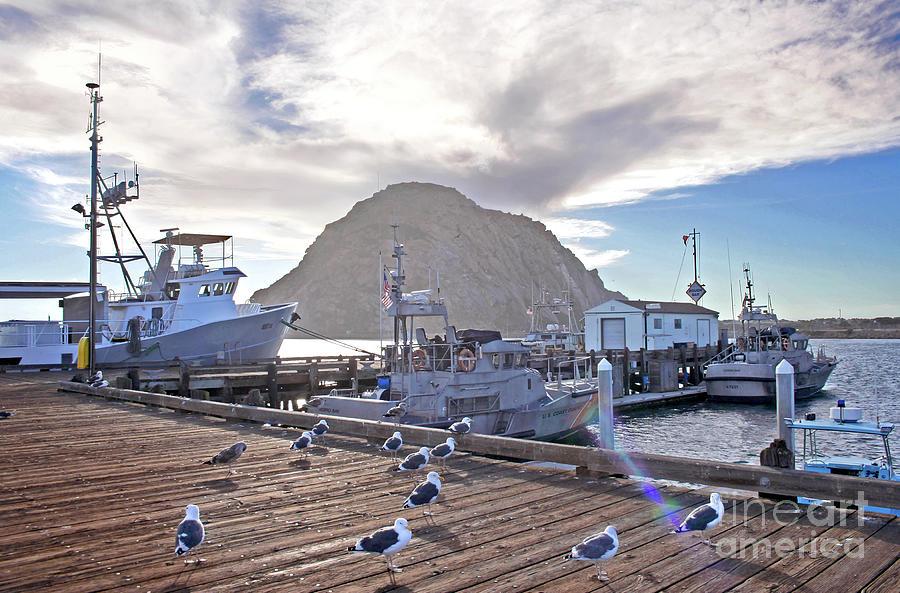 Morro Bay Harbor by Michael Rock