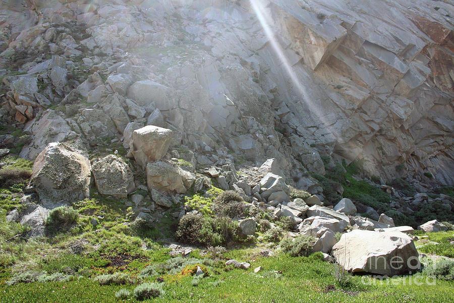 Morro Rock Cluster by Michael Rock