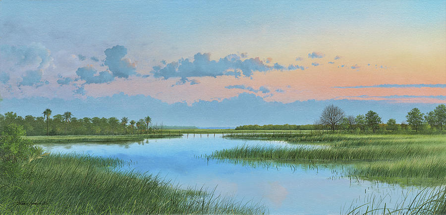 Mosquito Lagoon by Mike Brown