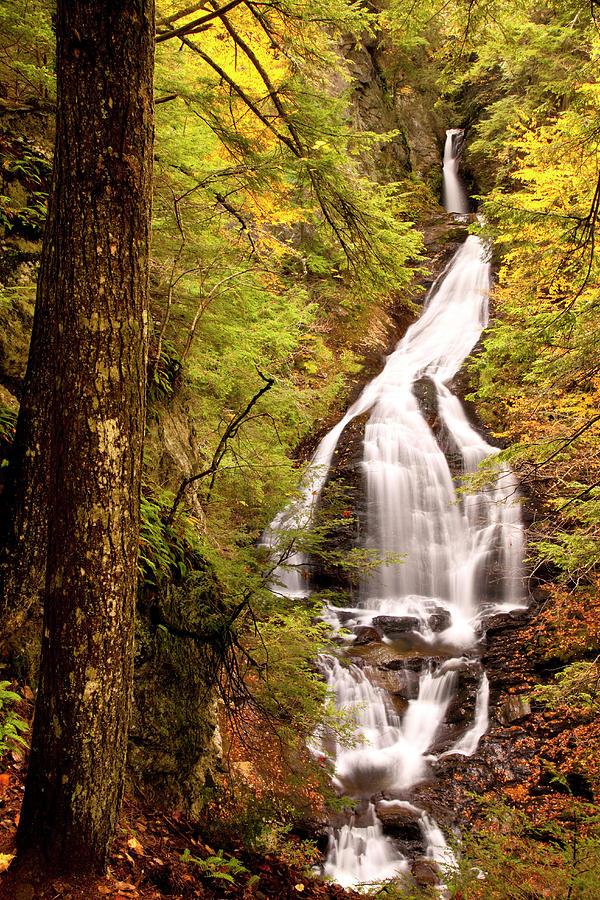 Moss Glen Water Falls, Stowe, Vermont Photograph by Danita Delimont