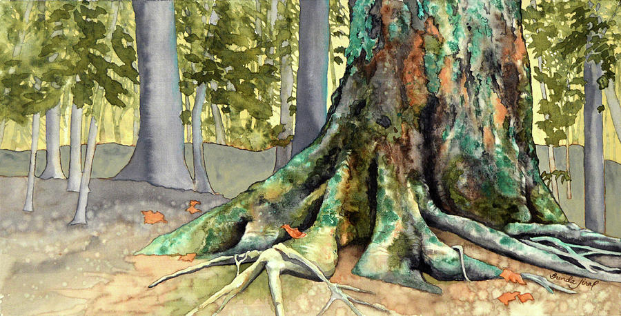 Watercolor Painting - Mossy Giant by Brenda Jiral