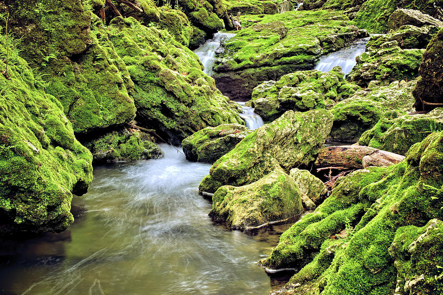 Mossy Moine Creek 3 by Bonfire Photography