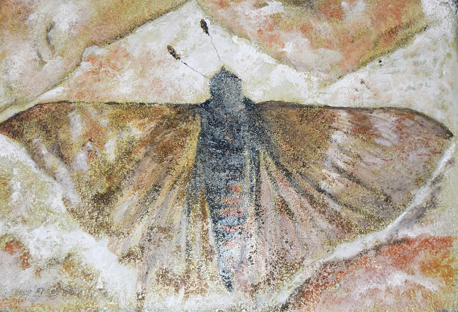 MOTH FOSSIL by Toni Willey
