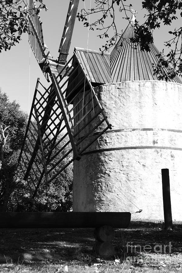 Ramatuelle Photograph - Moulin De Paillas by Tom Vandenhende