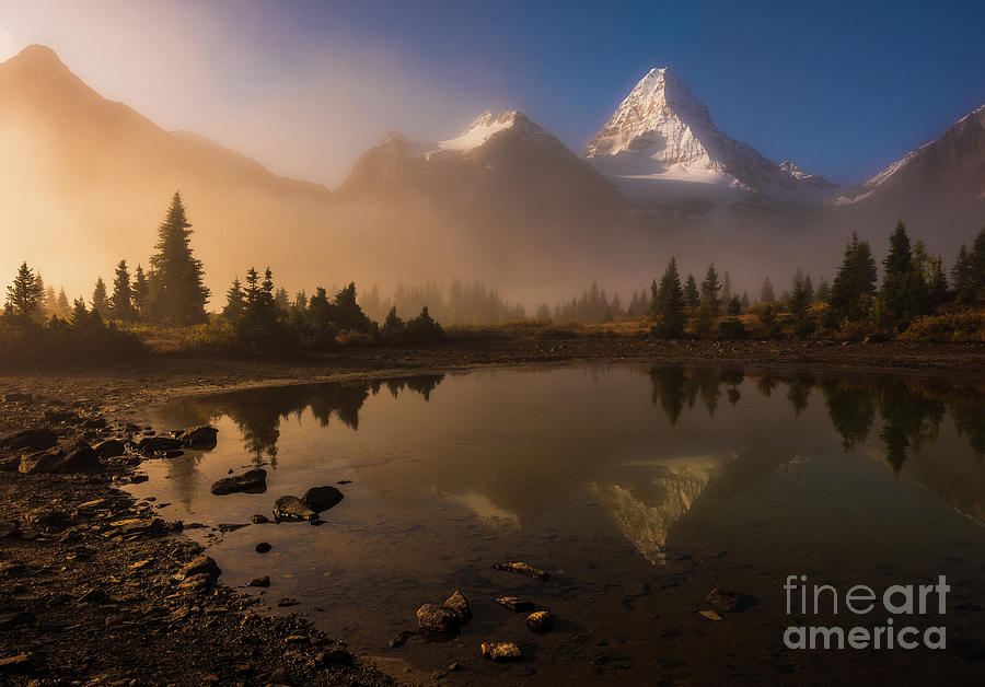 Mount Assiniboine Golden Dawn Photograph