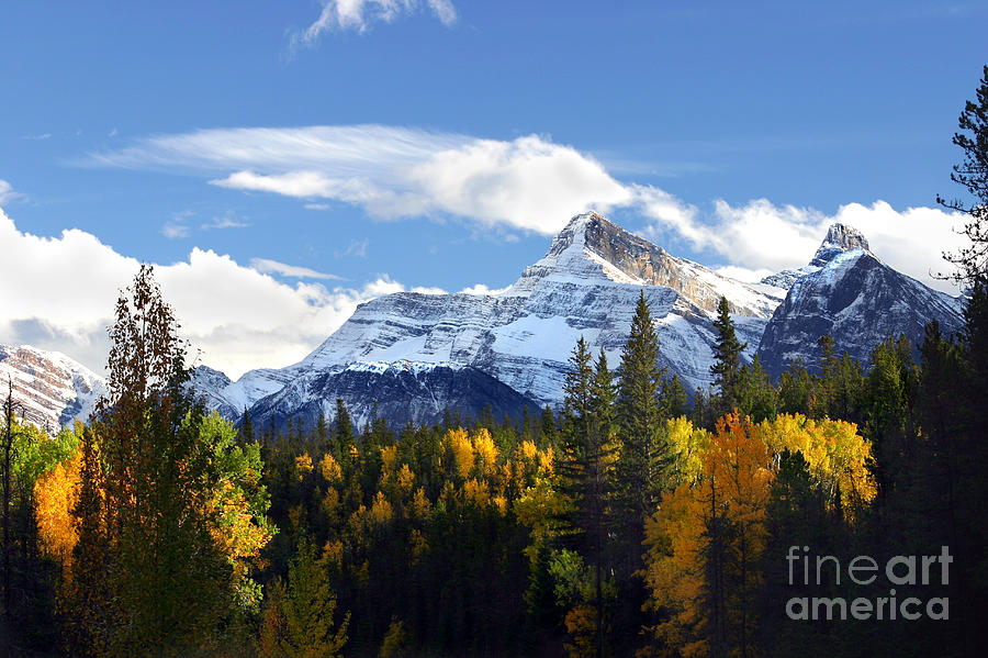 Mount Fryatt second tallest mountain Jasper National Park Alberta Canada by Robert C Paulson Jr
