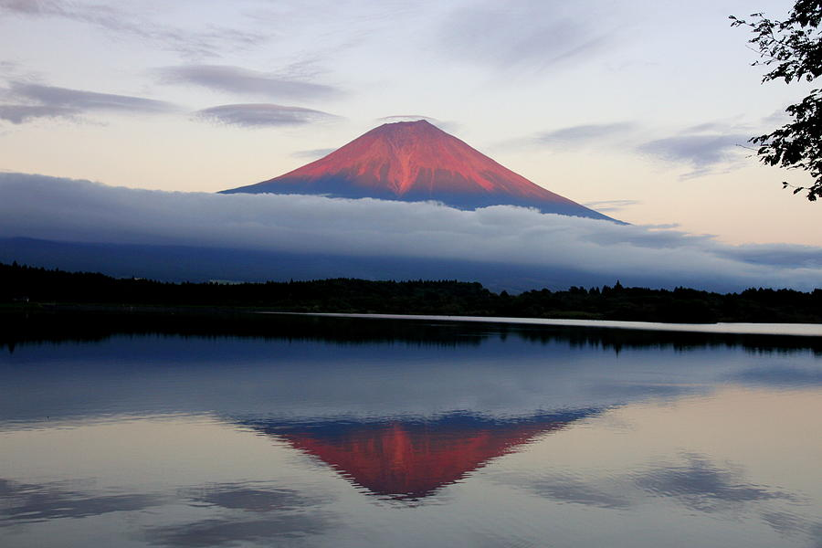 Mount Fuji Photograph by Japan From My Eyes