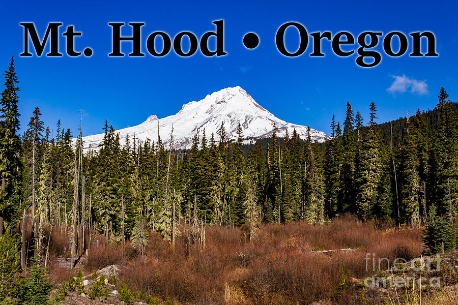 Mount Hood Photograph - Mount Hood Oregon in Winter 01 by G Matthew Laughton