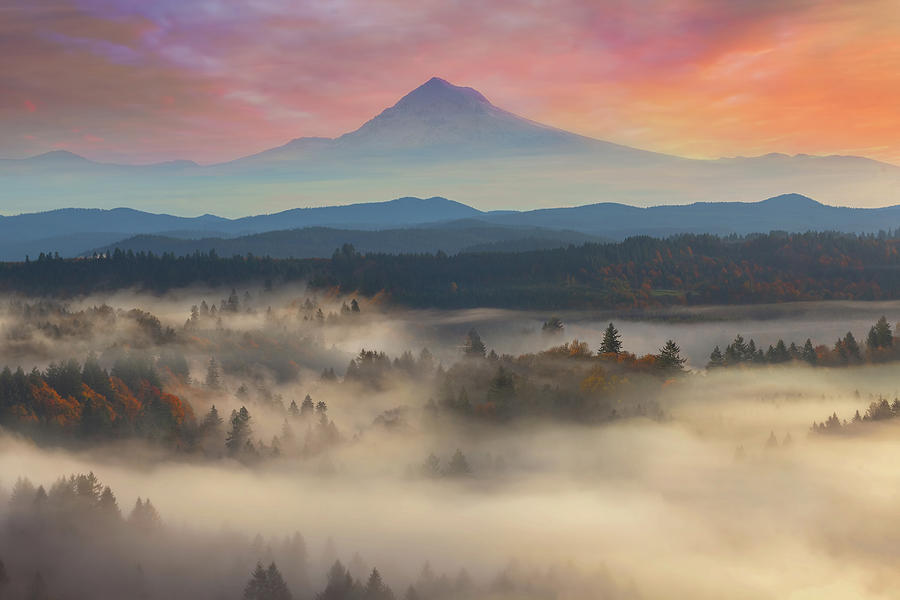 Mount Hood over Foggy Sandy River Valley Sunrise by David Gn