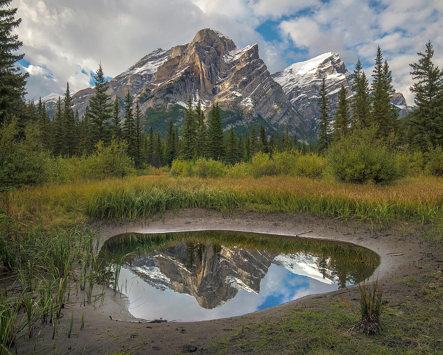Mount Kidd Reflected In Pond by Tim Fitzharris