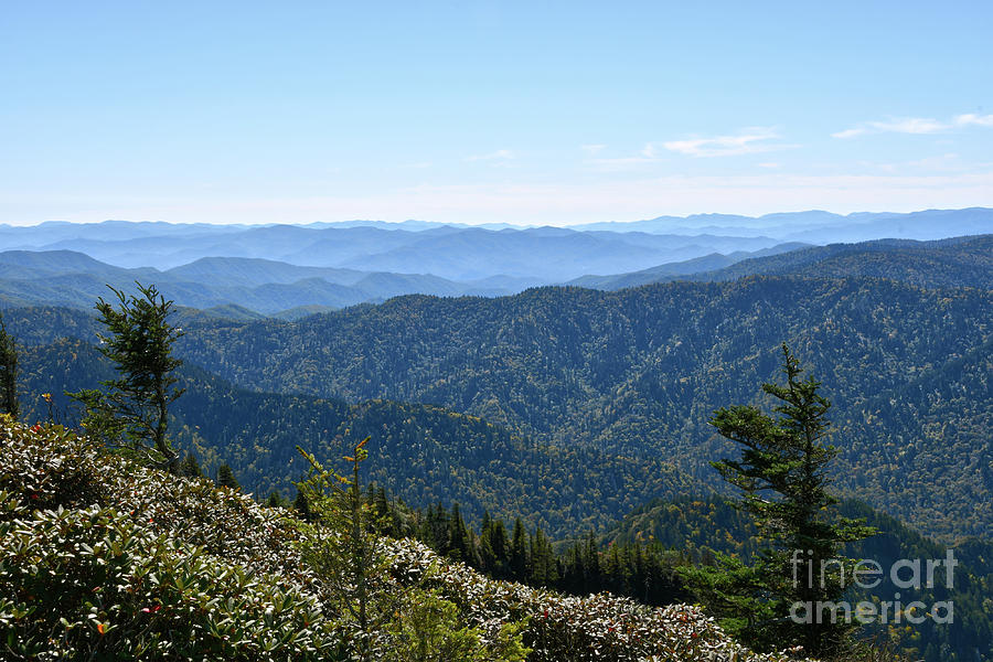 Mount LeConte 15 by Phil Perkins