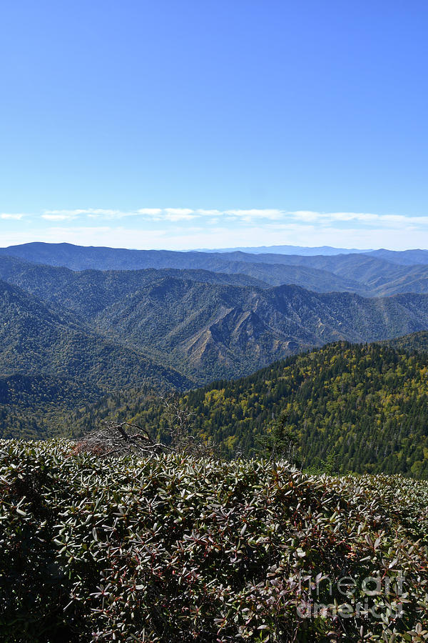 Mount LeConte 16 by Phil Perkins
