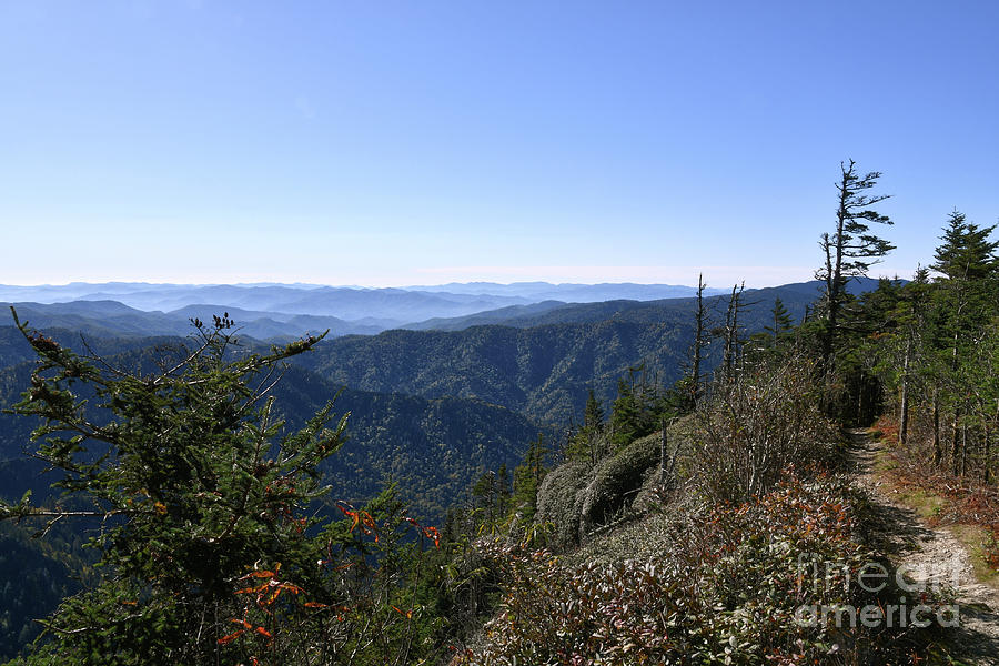 Mount LeConte 18 by Phil Perkins