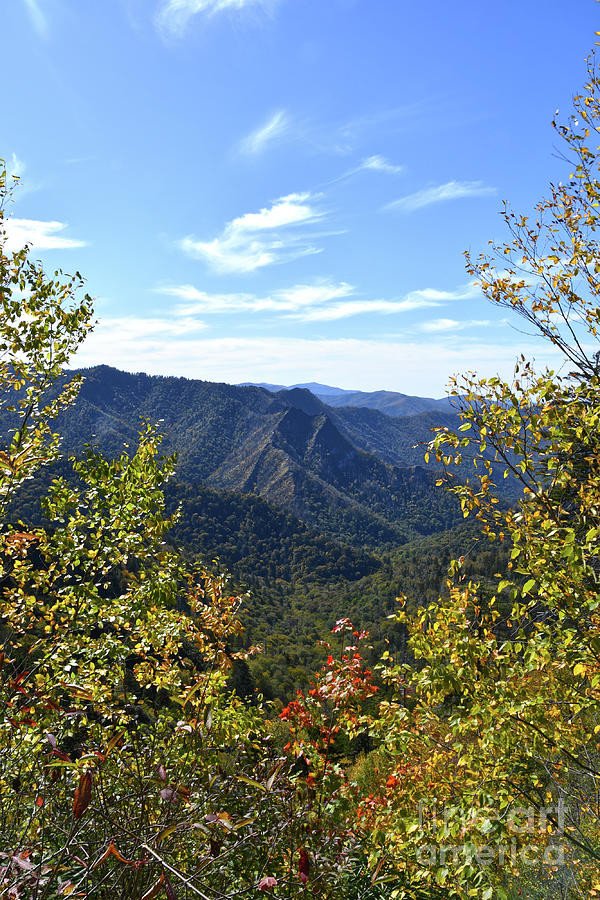 Mount LeConte 6 by Phil Perkins