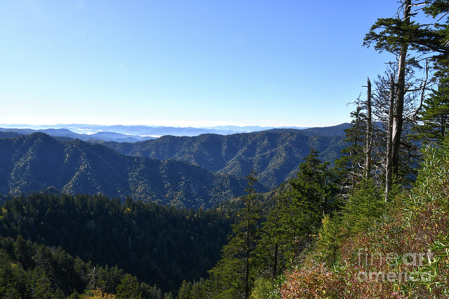 Mount LeConte 7 by Phil Perkins