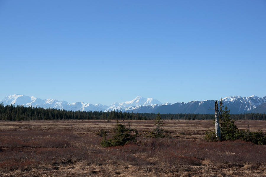 Mount Logan Photograph