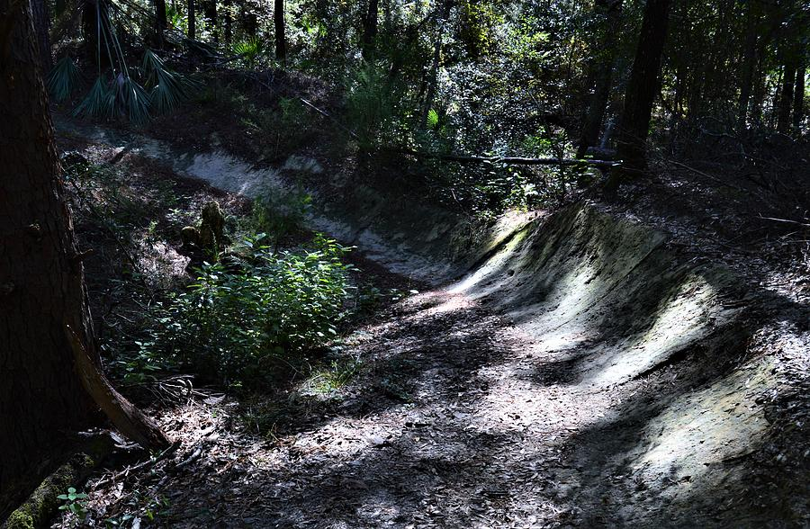 Mountain Bike Trail by Warren Thompson