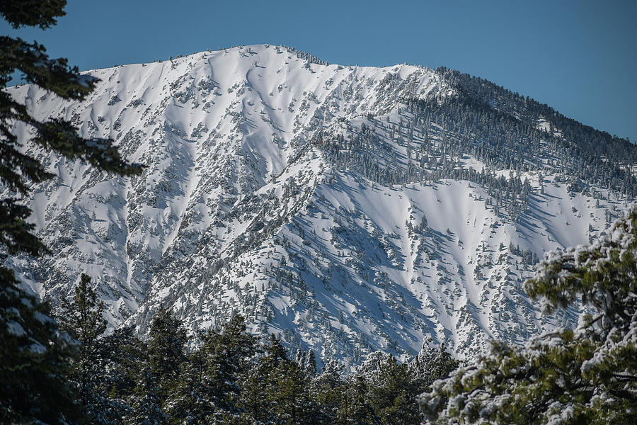 Mountain High in Wrightwood by Richard Cheski