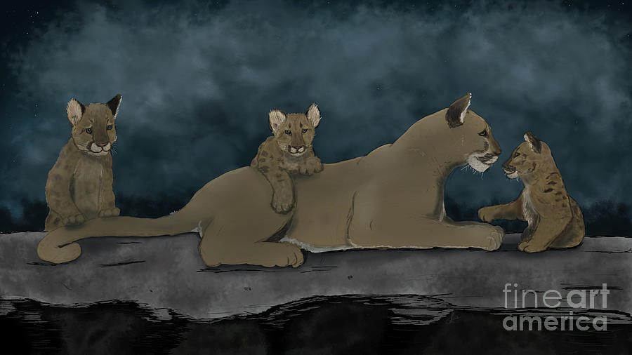 Mountain Lion with Cubs by the Ford Family