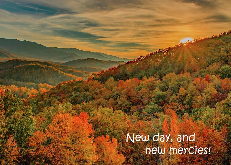 Mountain Mercies by Marcy Wielfaert