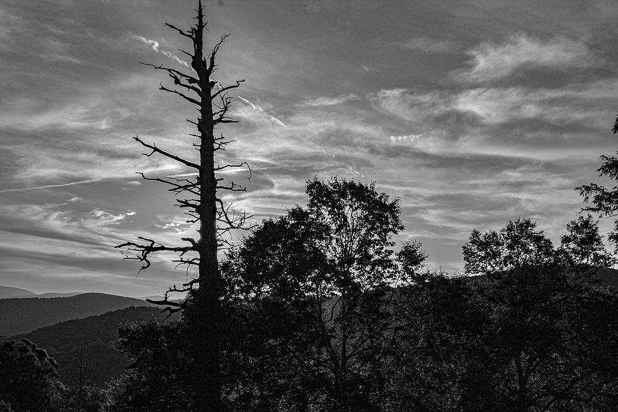 Mountain Nightfall by Dave Hilbert