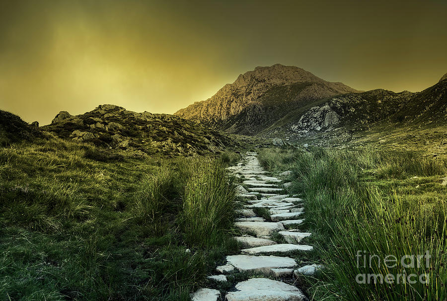 Mountain Path by David Lichtneker