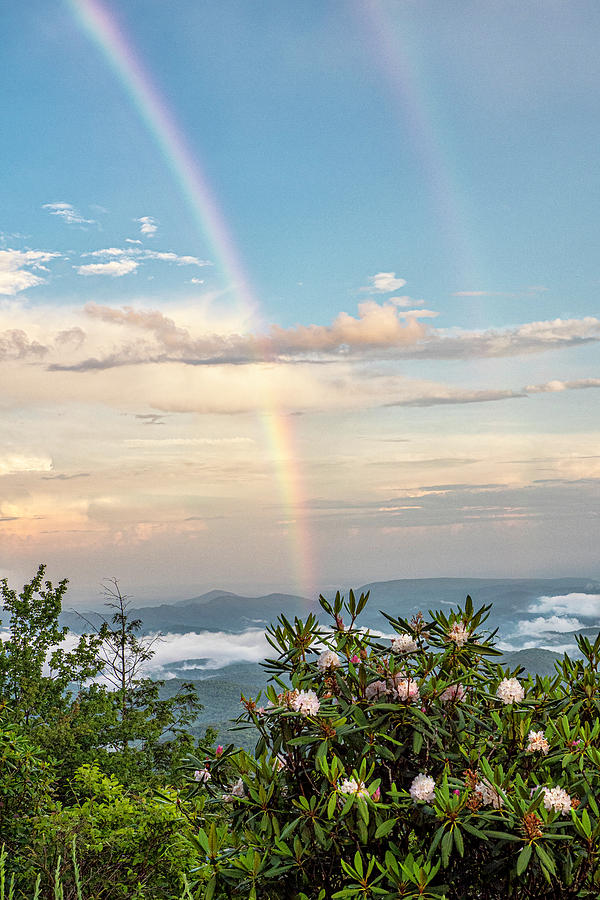Mountain Rainbow Vertical by Ken Barrett