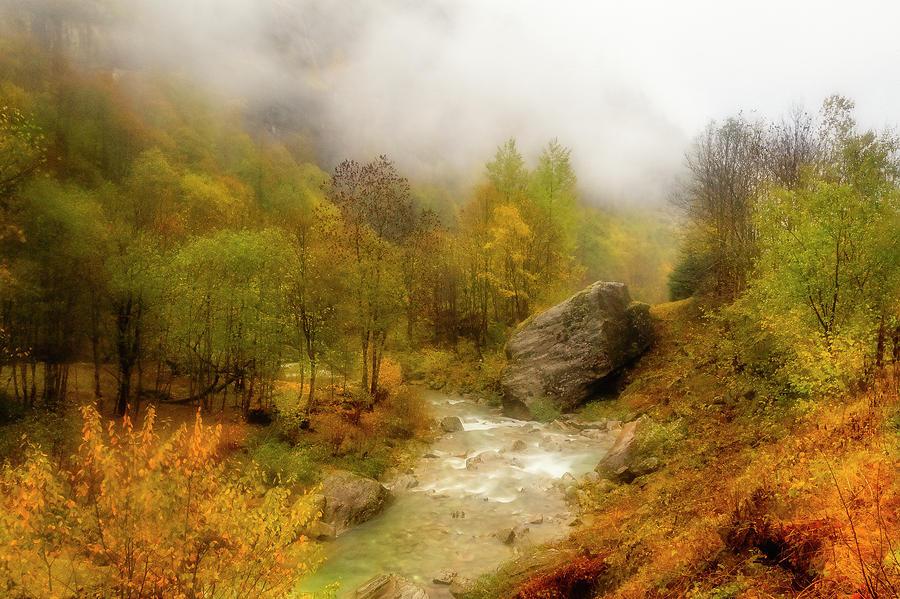 Mountain stream among fall colors by Roberto Pagani