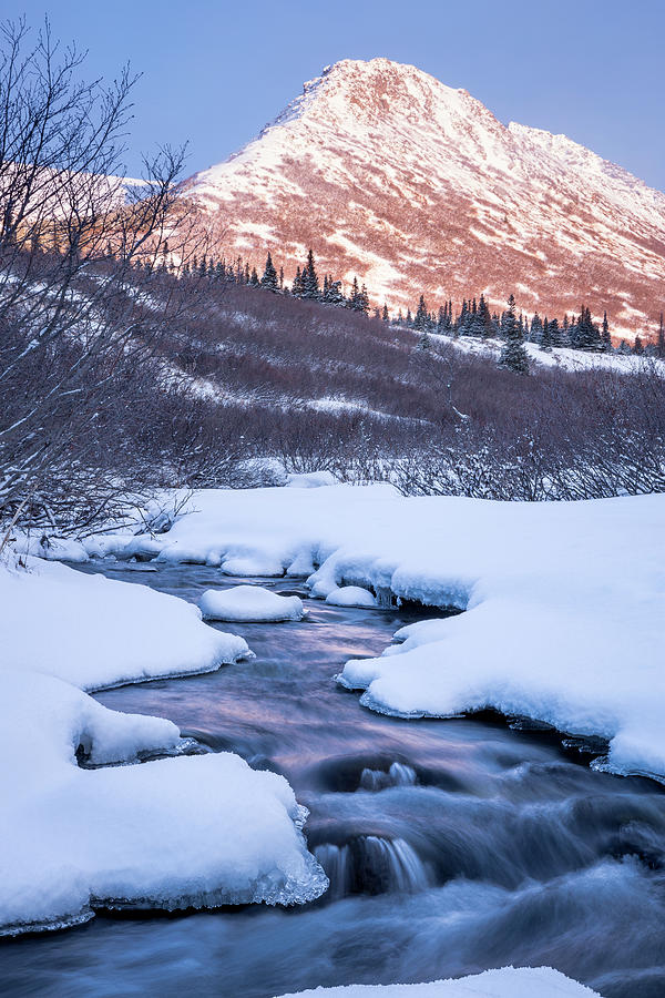 Mountain Stream in Winter by Tim Newton
