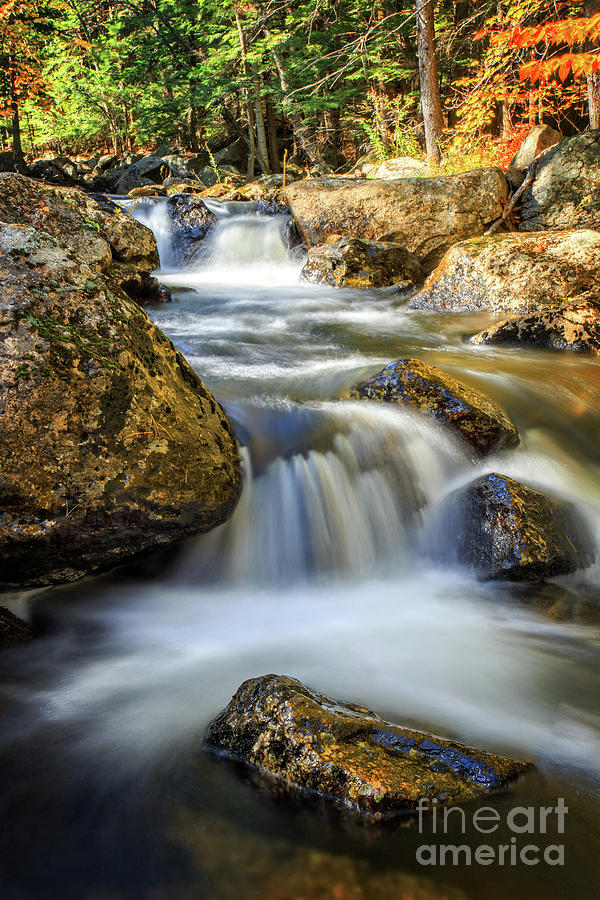 Water Photograph - Mountain Stream Waterfall  by Edward Fielding