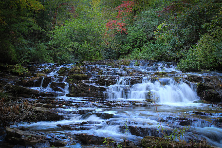 Mountain Streams by Richard Parks