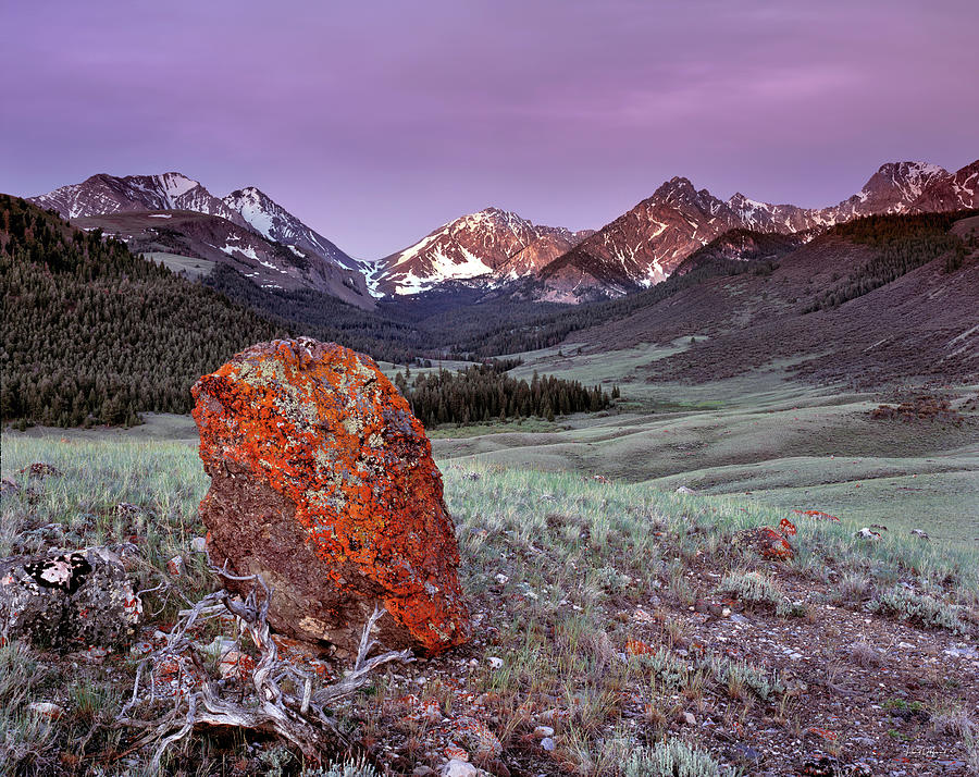 Beautiful Photograph - Mountain Textures And Light by Leland D Howard