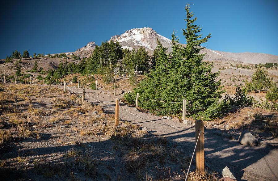 Mountain Trail by Kristopher Schoenleber