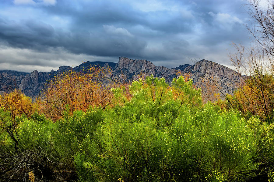 Mountain Valley No33 by Mark Myhaver