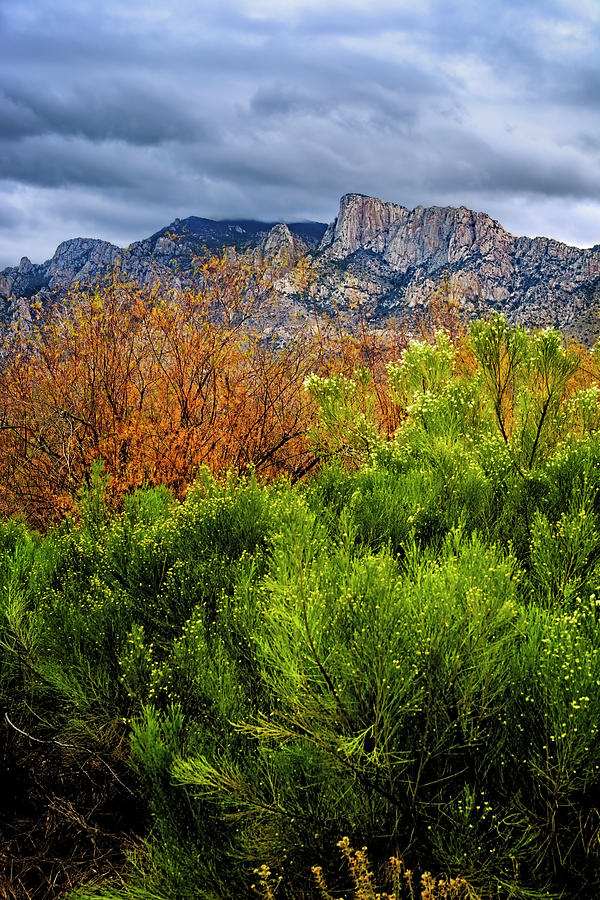 Mountain Valley No9 by Mark Myhaver