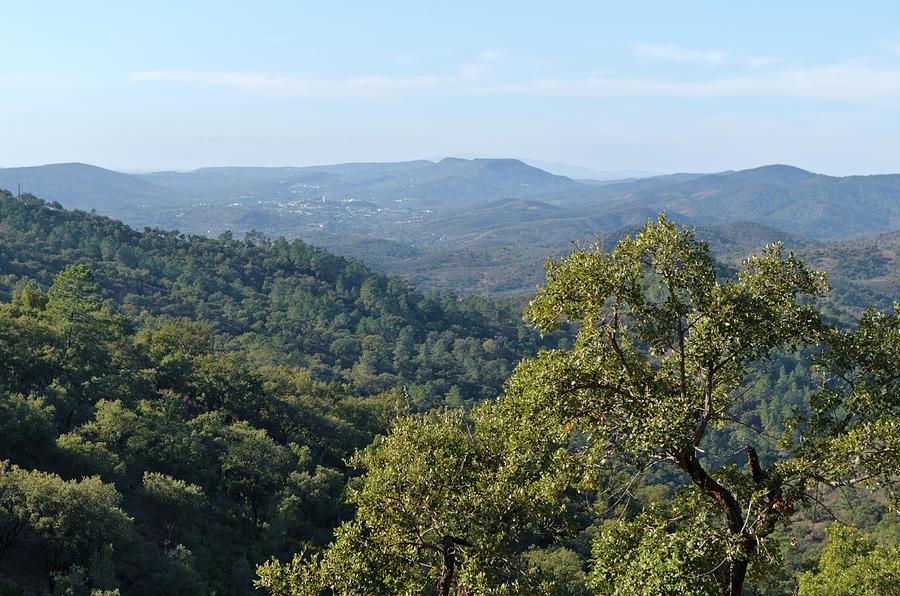 Mountains of Loule. Serra do Caldeirao by Angelo DeVal