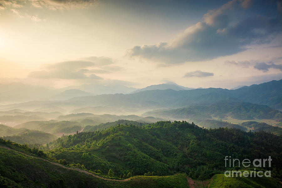 Forest Photograph - Mountains Under Mist In The Morning In by Humannet