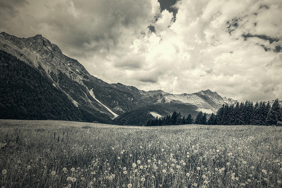 Mountainscape with flowery meadow by Roberto Pagani