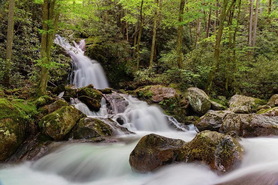 Mouse Creek Falls II by Larry Waldon