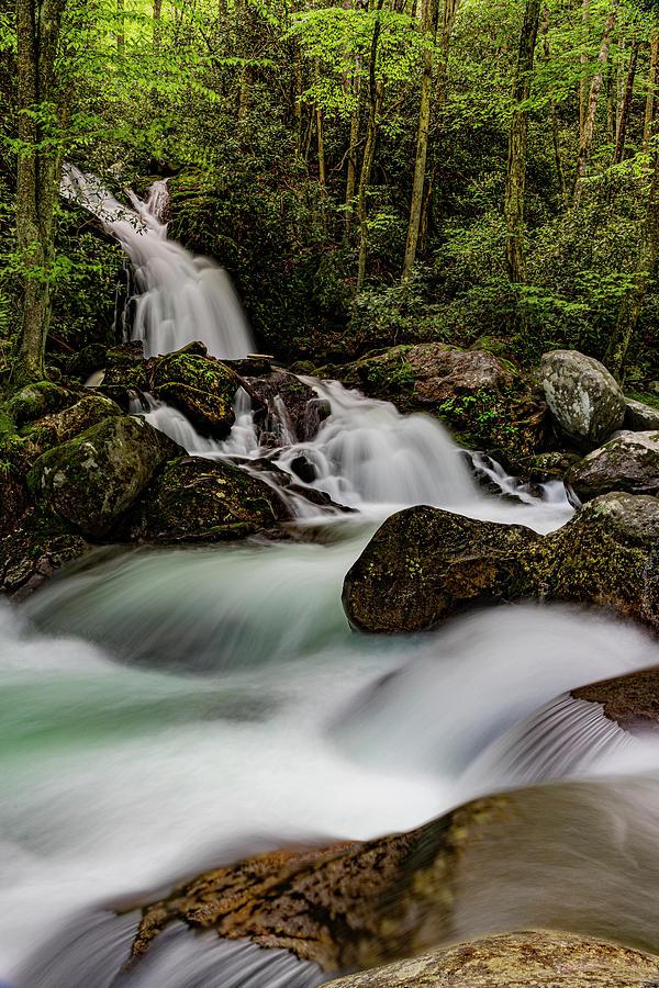 Mouse Creek Falls III by Larry Waldon