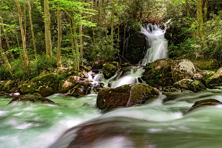 Mouse Creek Falls by Larry Waldon