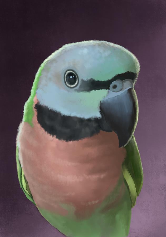 Moustache Parakeet Digital Art by KC Gillies