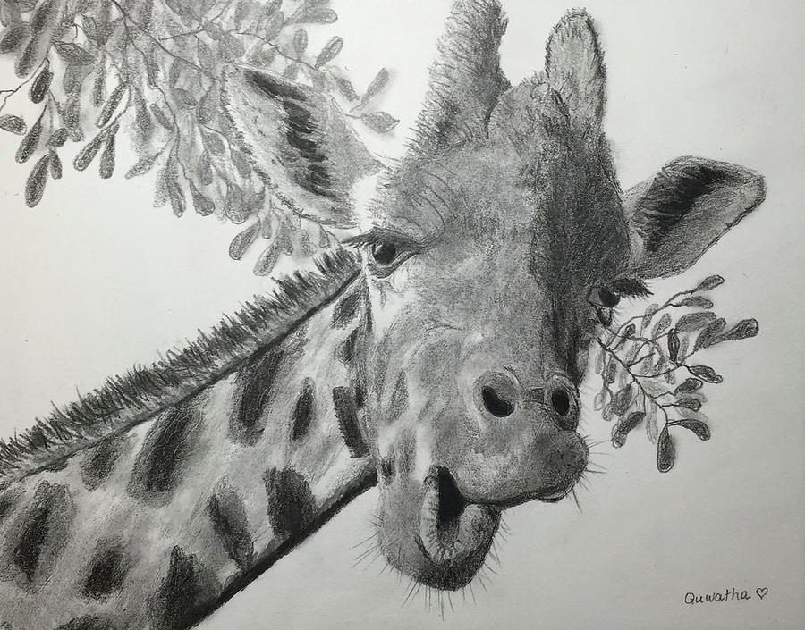 Mr Giraffe Says Hello by Quwatha Valentine
