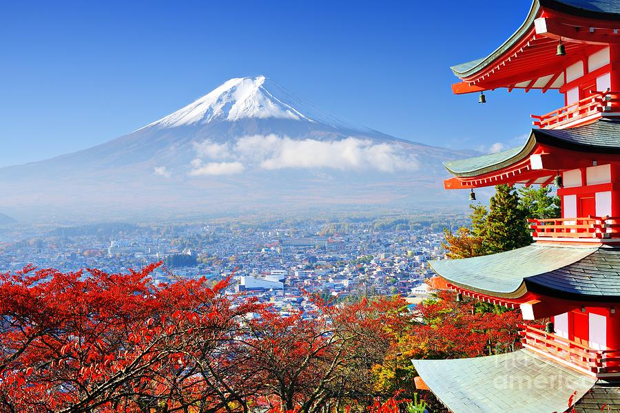Mt. Fuji Photograph - Mt. Fuji With Fall Colors In Japan by Sean Pavone