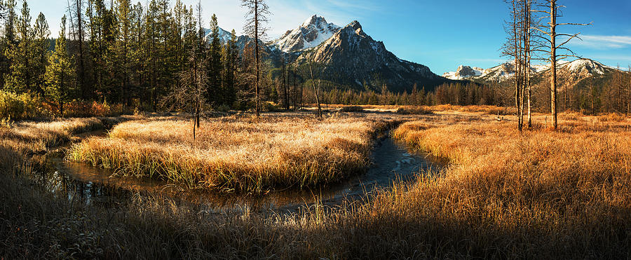 Mt McGowan Stanley Idaho by Vishwanath Bhat
