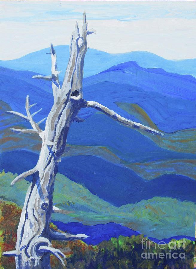 Mt. Mitchell by Anne Marie Brown