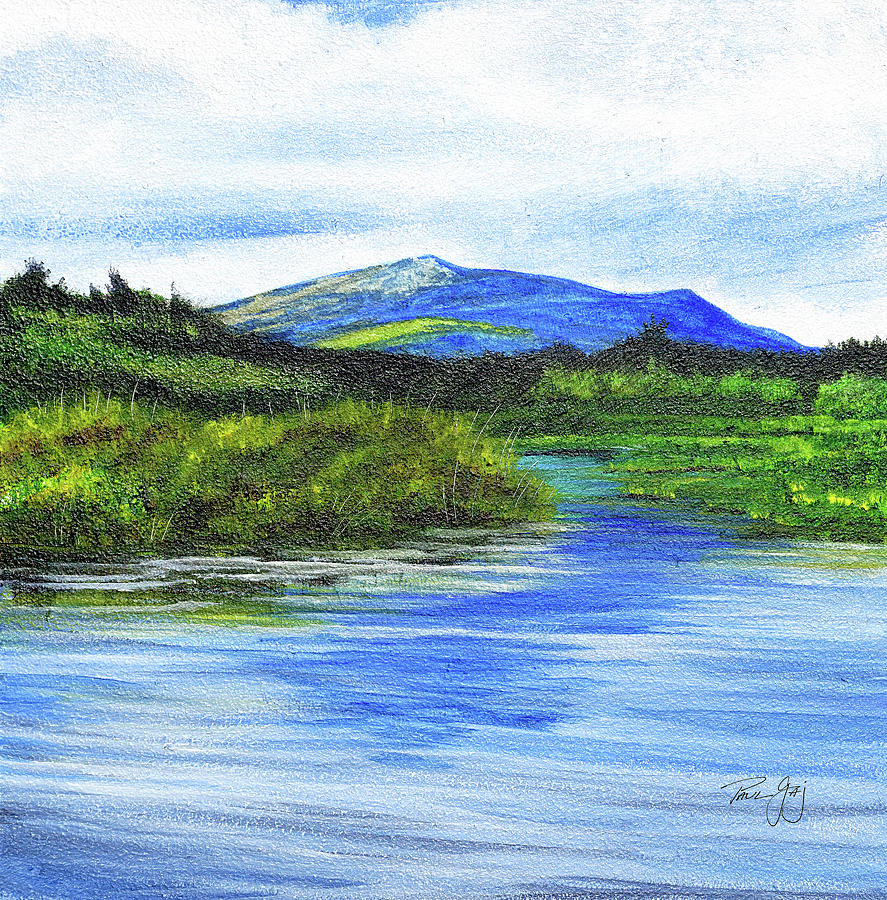 Mt. Monandnock From Scott Brook by Paul Gaj