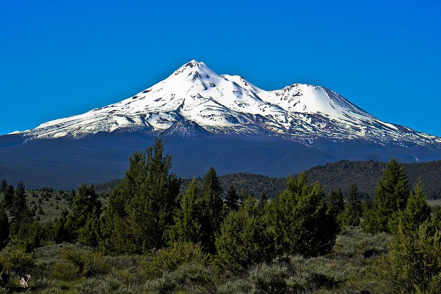 Shasta Photograph - Mt Shasta 06 08 19 by Joyce Dickens